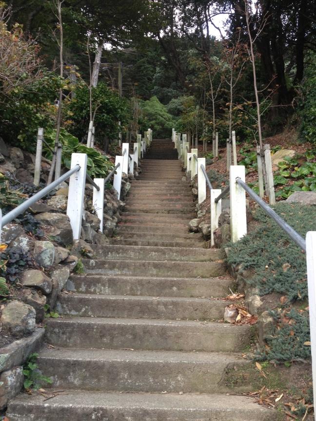 Up Tinakori Hill