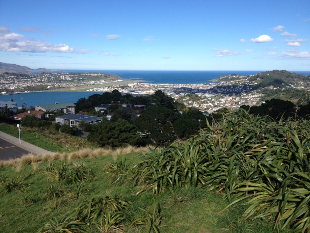 Airport & Lyall Bay