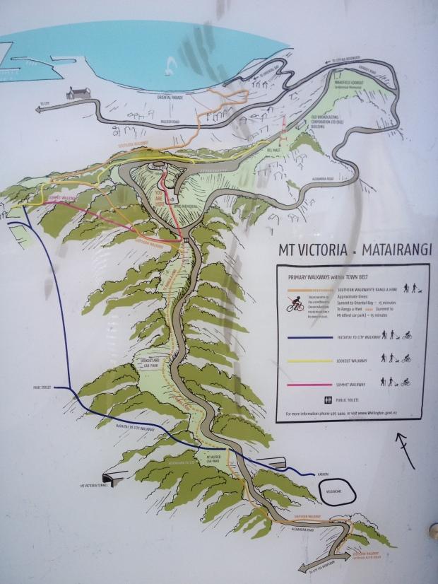 Mt Vic trail map